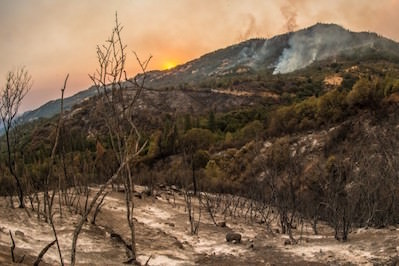The Western United States Faces an Explosion of Wildfires