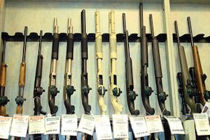 The Future of Gun Control in the Aftermath of Sandy Hook