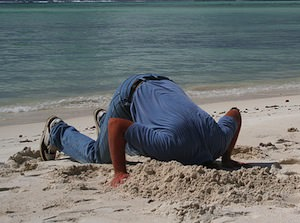 As the World Warms, More Americans Put Their Heads in the Sand
