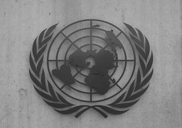 The U.N.: Pretending to Oppose War for 70 Years -- an Open Letter