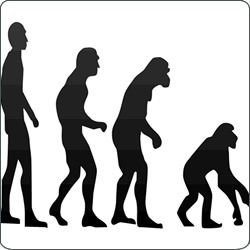 Survey Says Teachers Lack Backbone When It Comes to Evolution