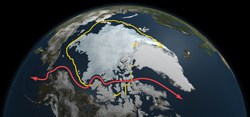 Why an Unusually Melty Arctic Means Trouble