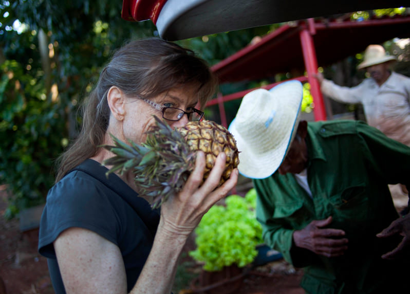 What the U.S. Can Learn From Cuba's Food Revolution