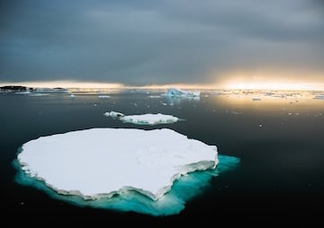 Scientists Zero In on Only Solution to Climate Crisis