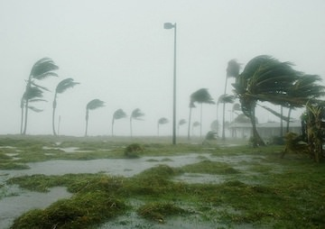 Climate Data Gives Mixed Message on Storm Forecasts