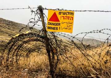 Syrian Regime Propaganda Coup as Israel Downs Syrian Plane Over Golan Heights