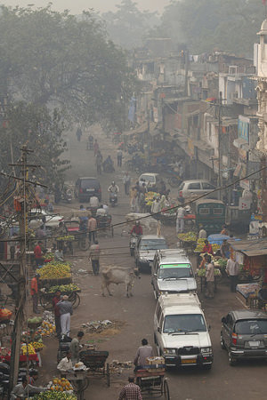 Dirty Air Set to Become Biggest Environmental Killer