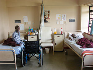 Privatizing Health Care in the Third World