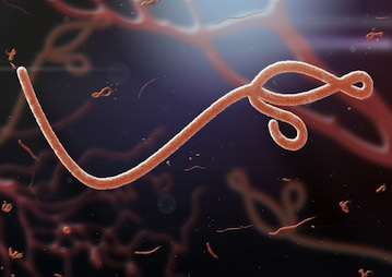 CDC: First Person to Test Positive for Ebola in U.S. Is in Dallas