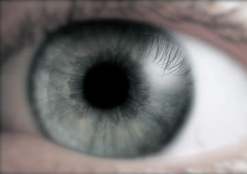 Can This Machine Tell If You're Liberal or Conservative by Looking Into Your Eyes?