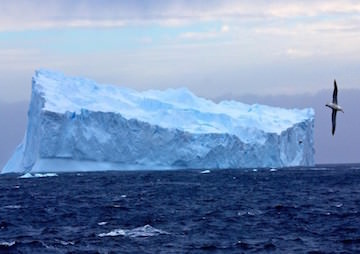 Giant Calving Icebergs May Slow the Pace of Climate Change