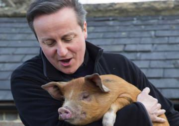 What You Need to Know About David Cameron's #Piggate, the Controversy Sweeping the U.K.