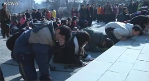 Grieving for the Dear Leader