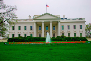 White House Replies to Secession, Death Star Petitions