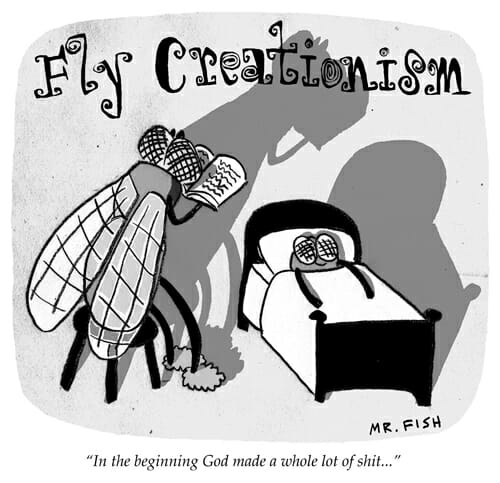 Fly Creationism