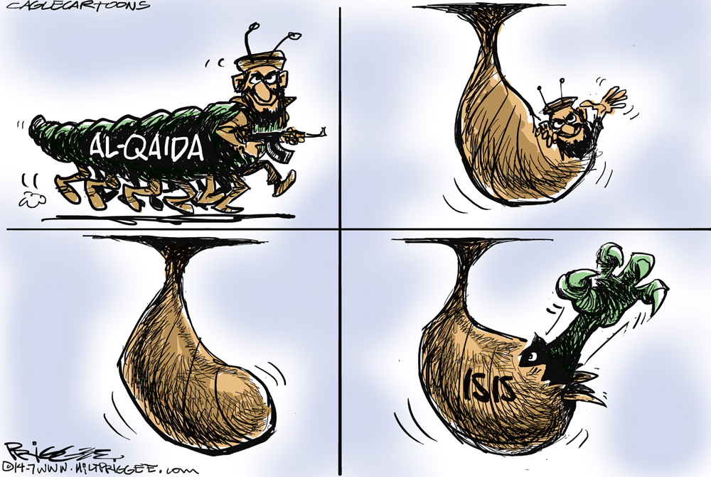 ISIS Cocoon