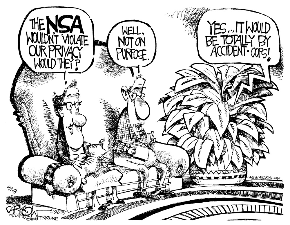 The Accidental NSA