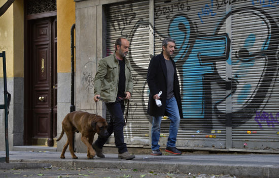 Two Accomplished Actors—and a Cute Dog—Elevate 'Truman'