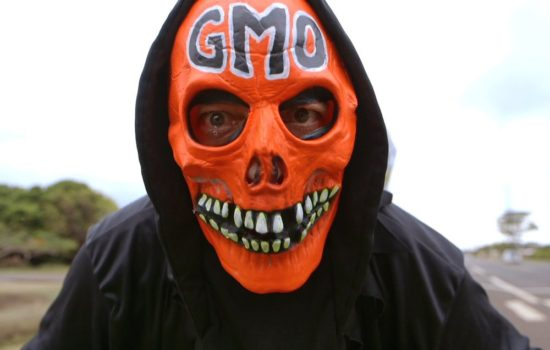 Is the GMO Scare a Marketing Scam? (Audio and Transcript)