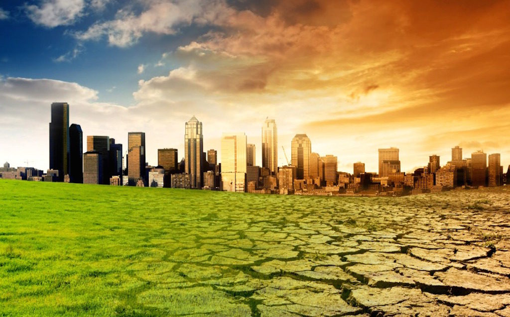 Doctors Sound the Alarm on Climate Emergency