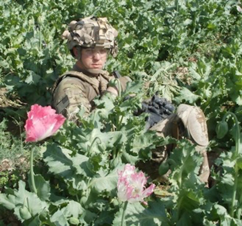 Thesis For Compare And Contrast Essay Danny Sjursen In An Afghan Poppy Field Photo Credit Maj Danny Sjursen Thesis Statement Generator For Compare And Contrast Essay also Essay On English Language The Things We See But Dont Say In The Afghanistan War  Truthdig Example Of A Proposal Essay