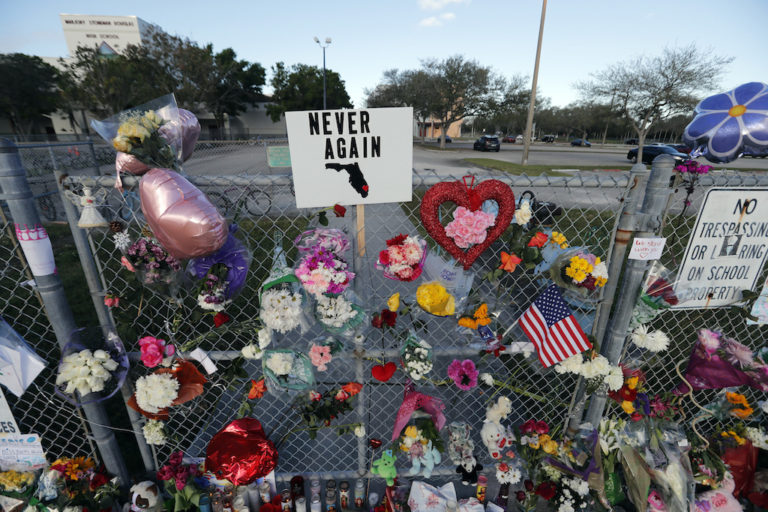 The Parkland Shooting Was About More Than Gun Violence