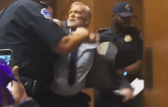 CIA Whistleblower Brutalized by Cops While Protesting Gina Haspel's Nomination (Video)