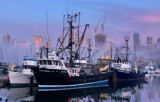 'Fish Wars' Loom as Climate Change Warms Waters