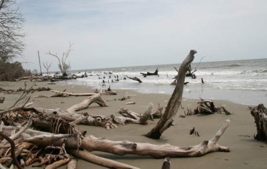 Cost of Rising Seas Could Reach $27 Trillion a Year by 2100