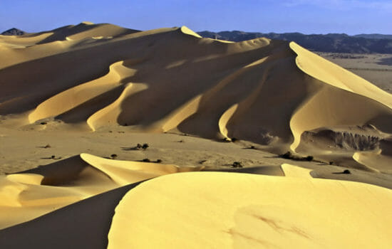 Renewables Could Green the Sahara Desert